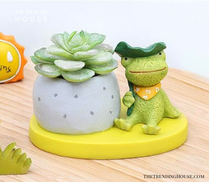 A Succulent's Toad-ally Awesome Friend