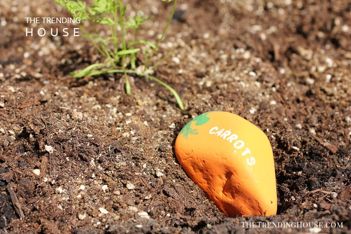 Adorable Painted Stone Garden Markers