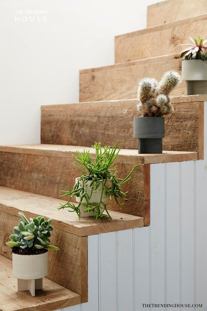 Alternative To Railings With Potted Plants