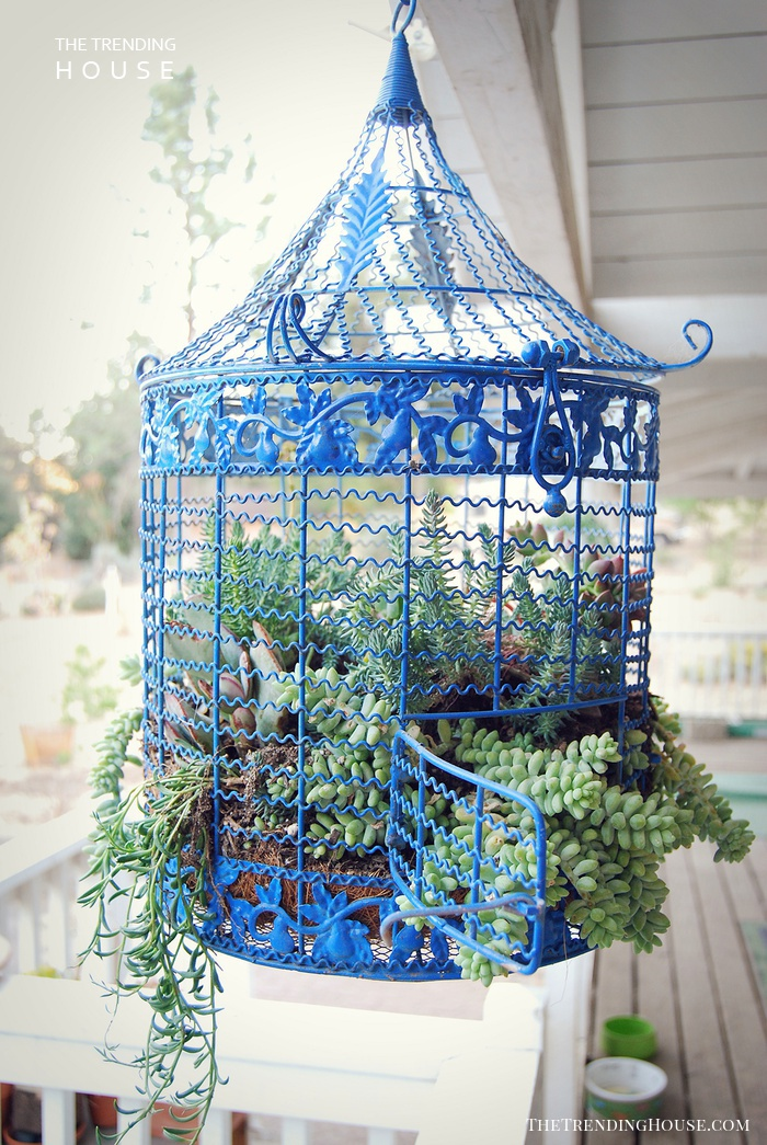 Hanging Mini-Garden within your Garden
