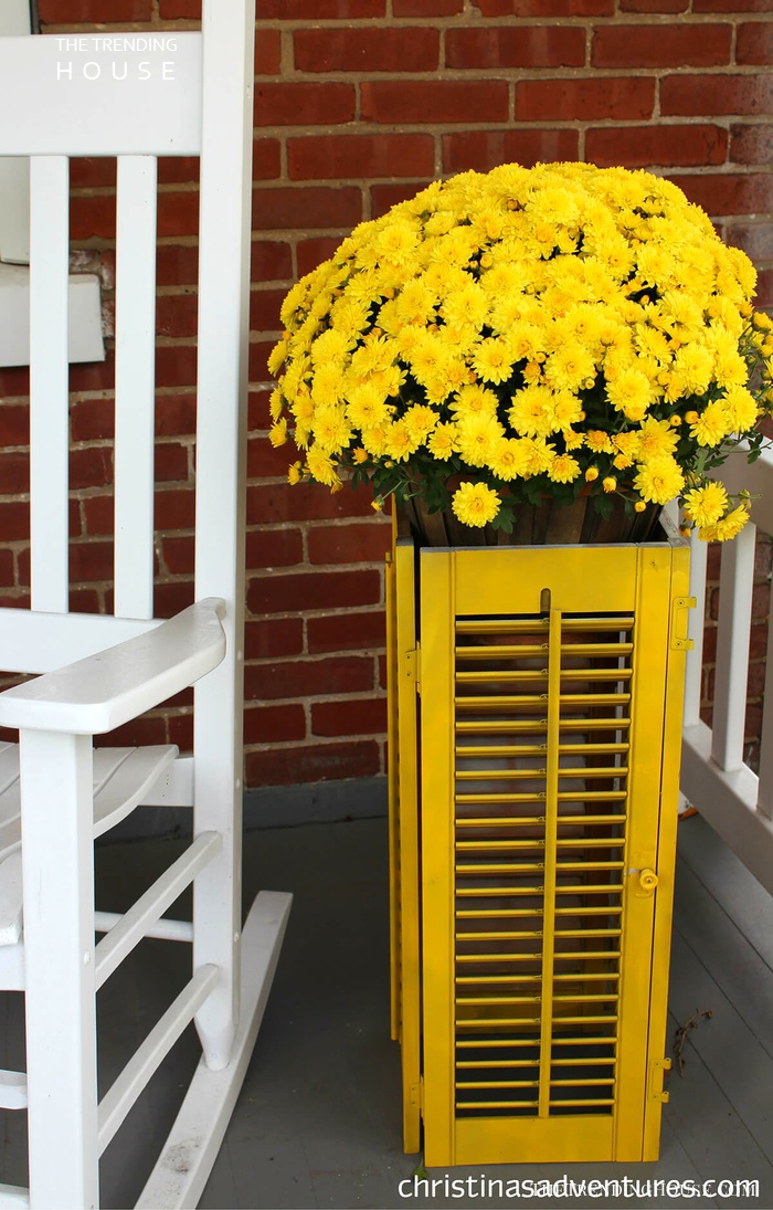 Bright Yellow Shutters Made into a Planter
