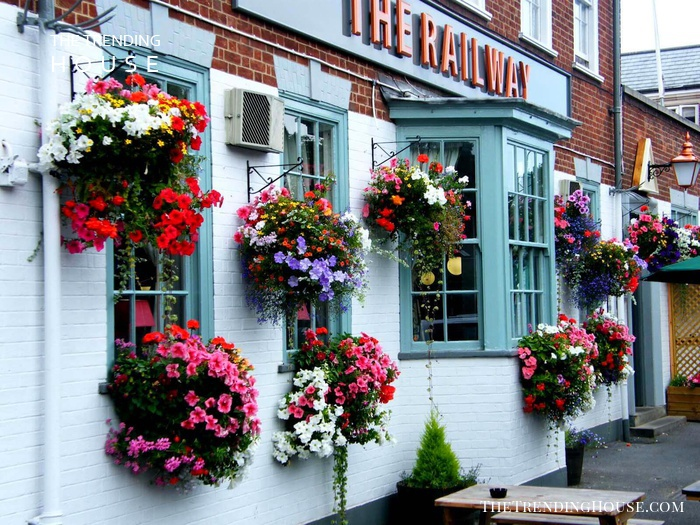 Cafe-Style Planters and Window Boxes