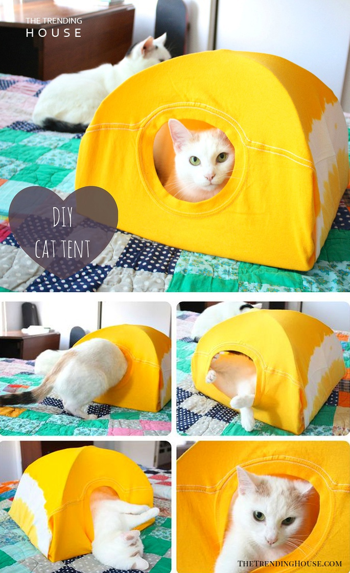 Easy T-shirt and Wire Hanger Cat Tent