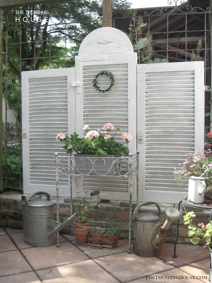 Garden Wall Divider with Floral Display