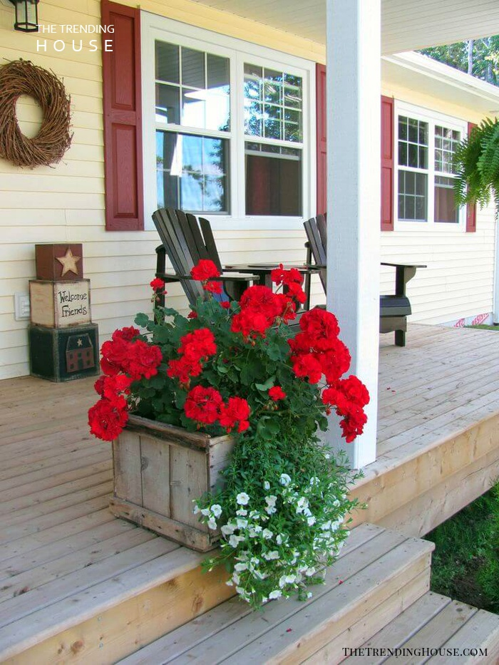 Geraniums in an Reclaimed Wooden Box