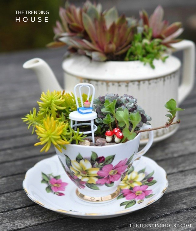 Have A DIY Fairy Garden Tea Party