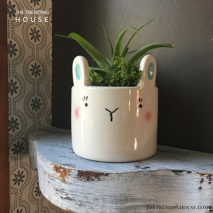 Hello Bunny! Perfect Planter for Spring Time