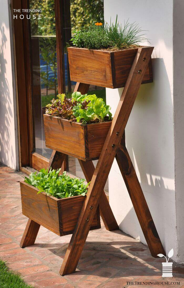 Ladder Box Herb Garden