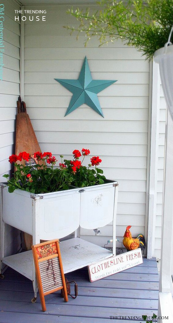 Old Washtub with Bright Red Geraniums