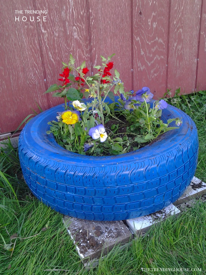 Painted Old Tires with Pansies