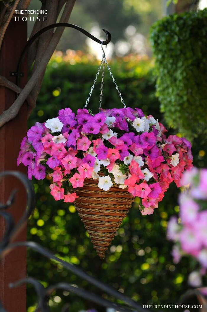 45 Charming Outdoor Hanging Planter Ideas To Brighten Your