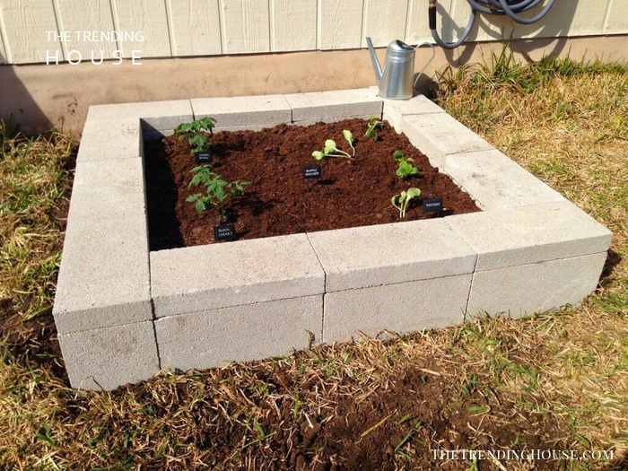 Raised Garden Bed Project with Cinder Blocks