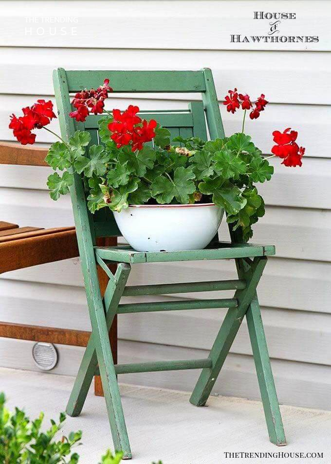 Simple Bowl of Geraniums on an Old Chair
