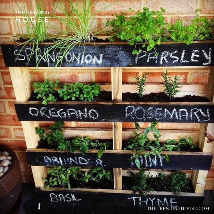 Stacked Wooden Shelves Herb Garden