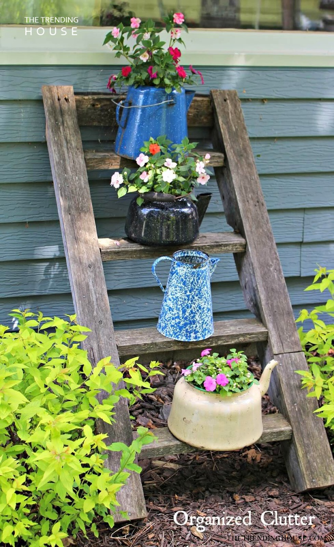Vintage Coffee Pot Planters with Ladder Display