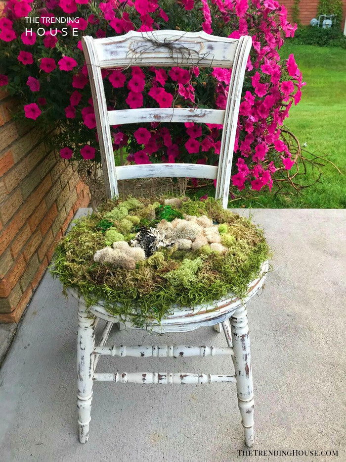 Vintage Farmhouse Chair with Moss Detailing