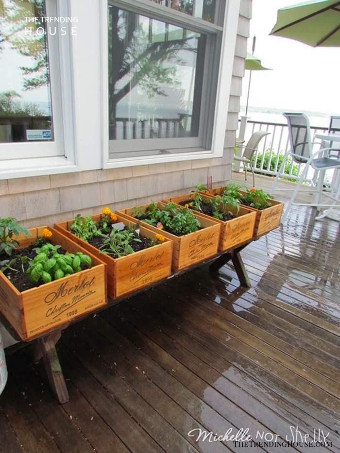 Vintner-Inspired Wine Box Herb Garden
